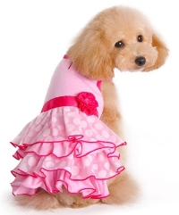 Dogo Summer Time Dress Teacup Fashions