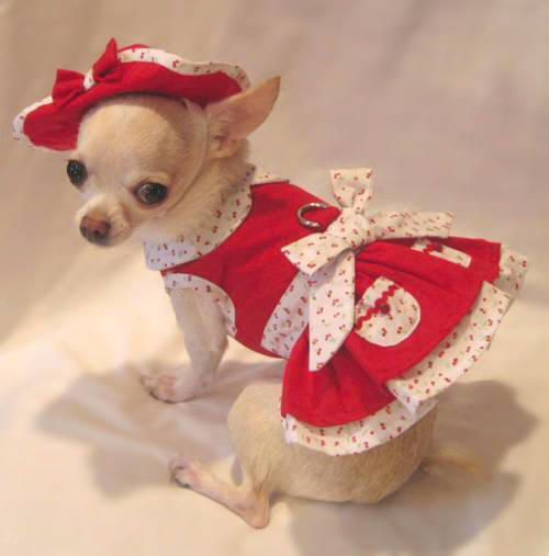 Platinum Puppy Couture Very Cherry Harness Dress With